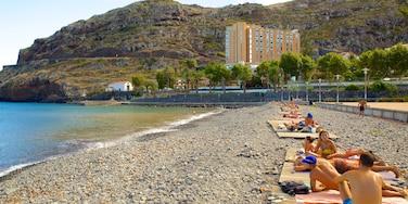 Machico which includes a pebble beach