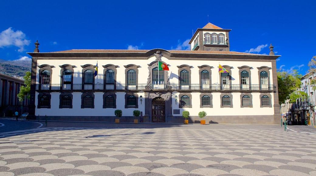 Bypladsen som viser en plads eller et torv, en administrativ bygning og historiske bygningsværker