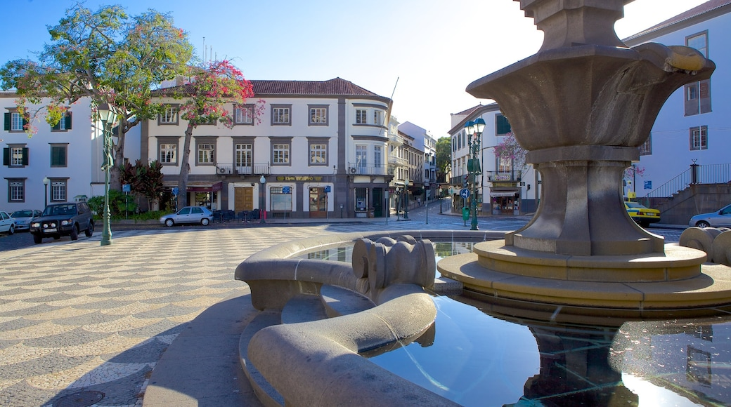 Town Square showing a fountain and a square or plaza