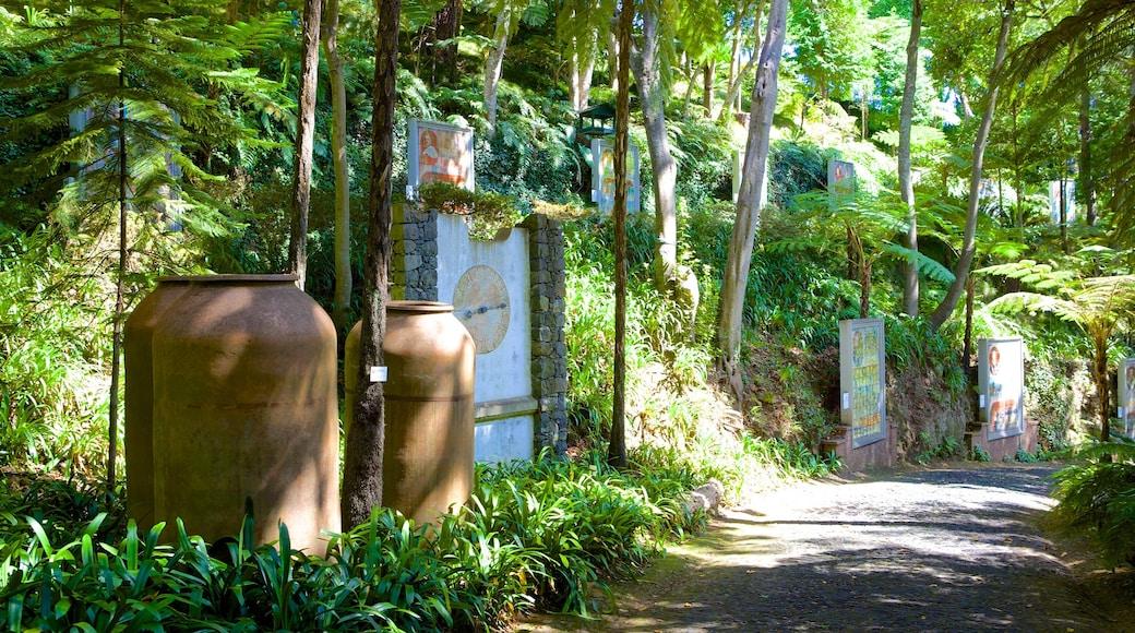 Tuinen Monte Palace bevat een tuin