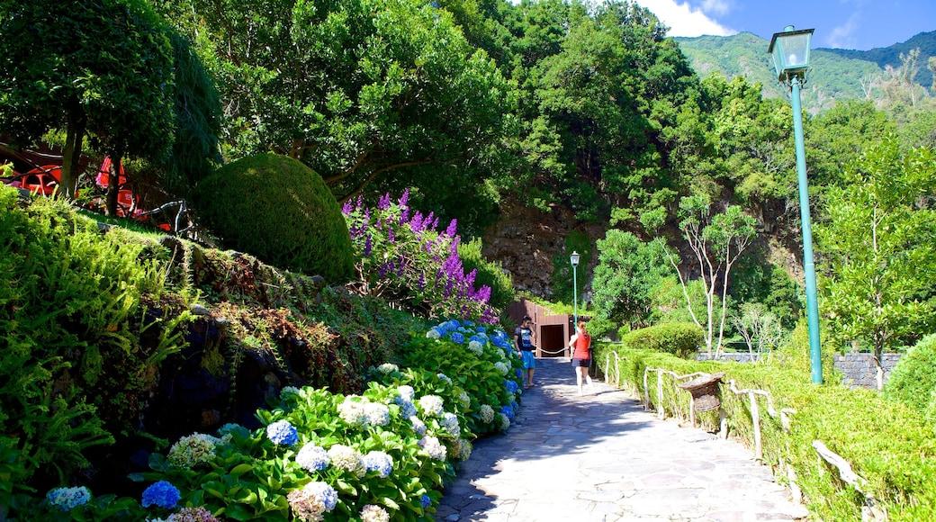 Grotten van Sao Vicente inclusief bloemen en een tuin