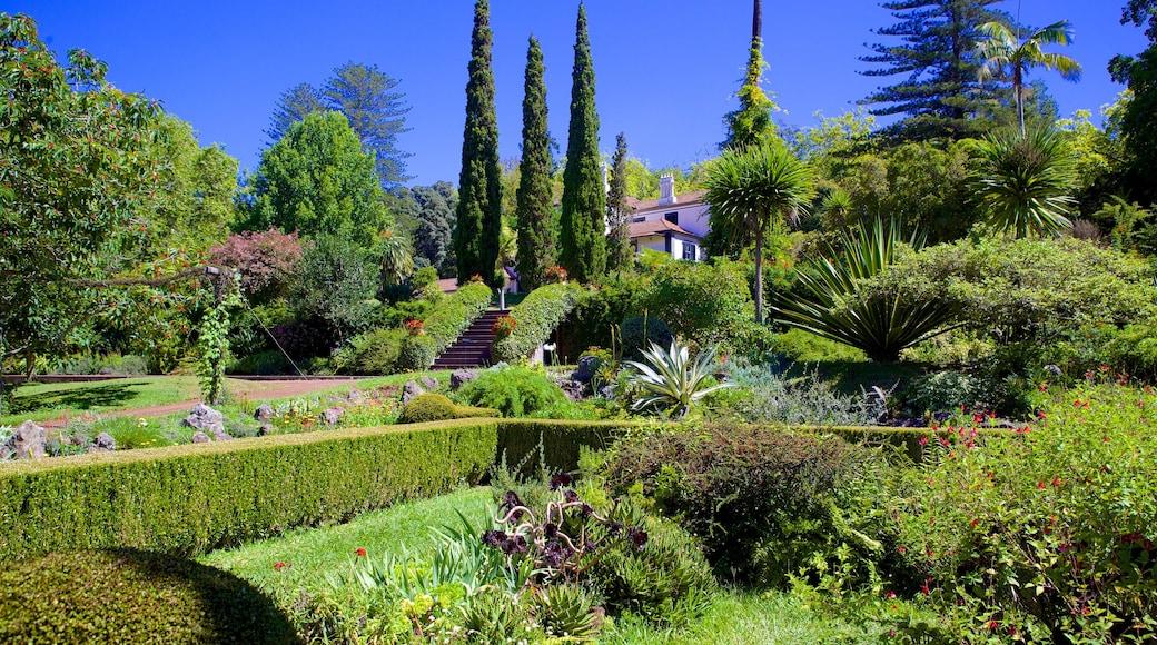 Jardins do Palheiro toont een tuin