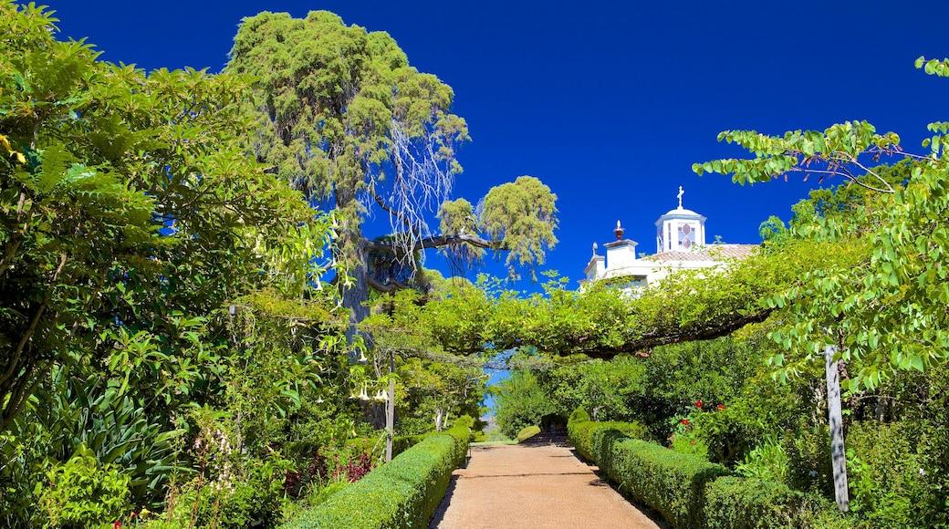 Jardins do Palheiro bevat een tuin