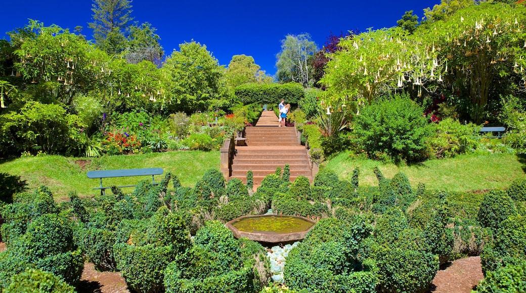 Jardins do Palheiro inclusief een park