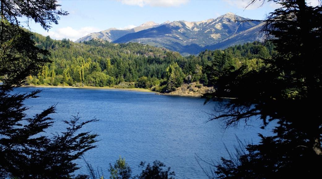 Parque Nacional Nahuel Huapi que incluye un lago o espejo de agua, vista panorámica y bosques