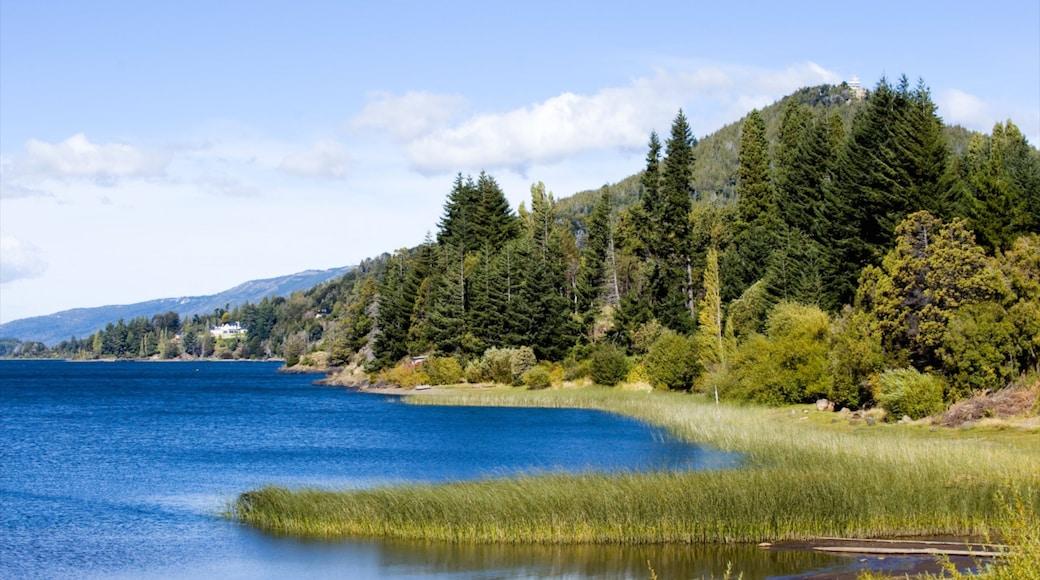 Parque Nacional Nahuel Huapi ofreciendo un lago o espejo de agua, vista panorámica y imágenes de bosques
