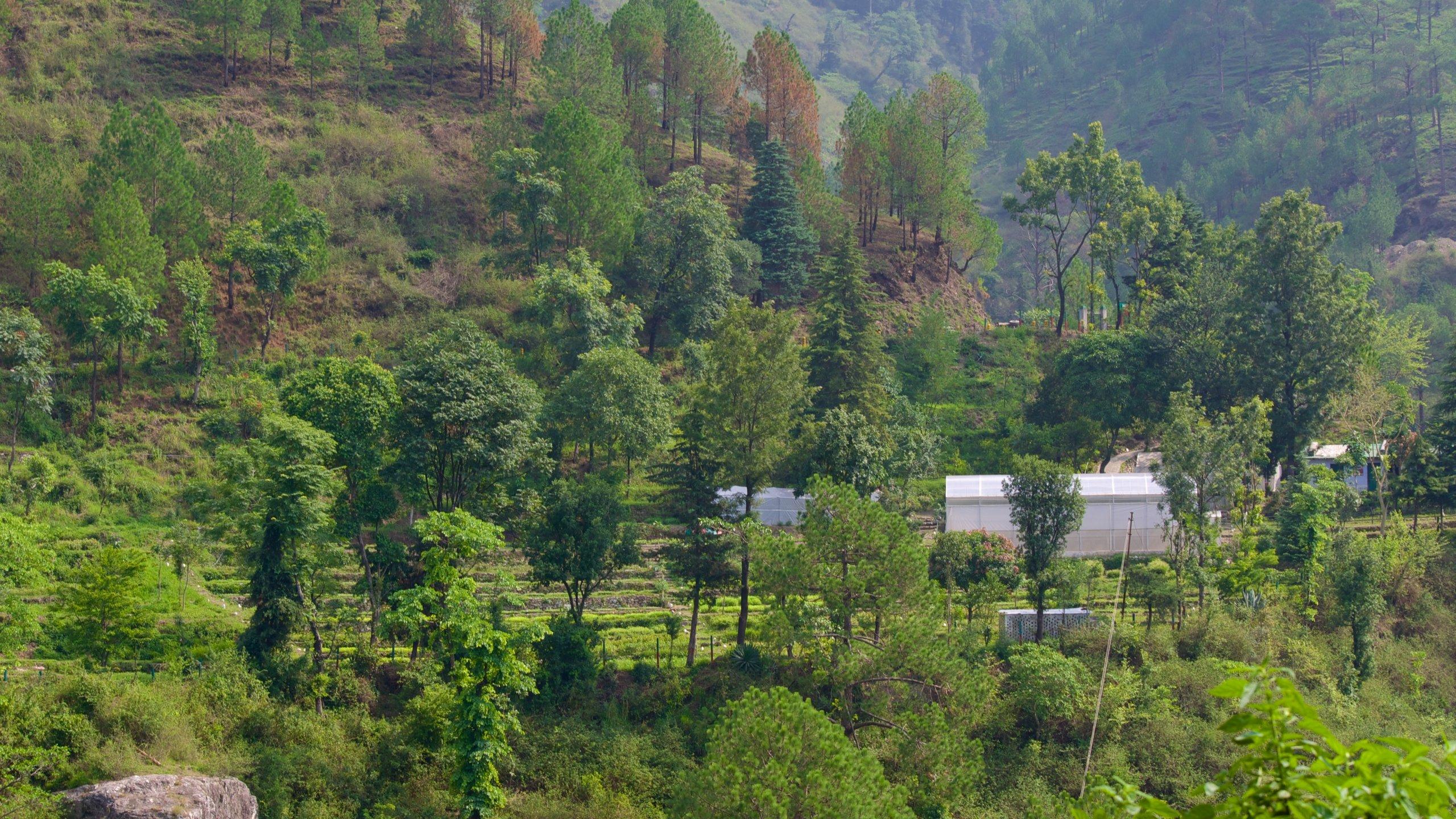 Nainital, Uttarkhand, Indie