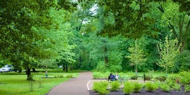 Branch Brook Park mostrando um jardim