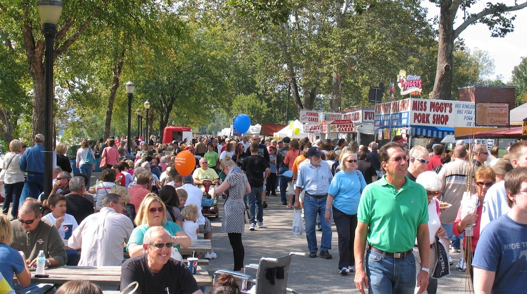 Madison featuring street scenes, outdoor eating and a festival