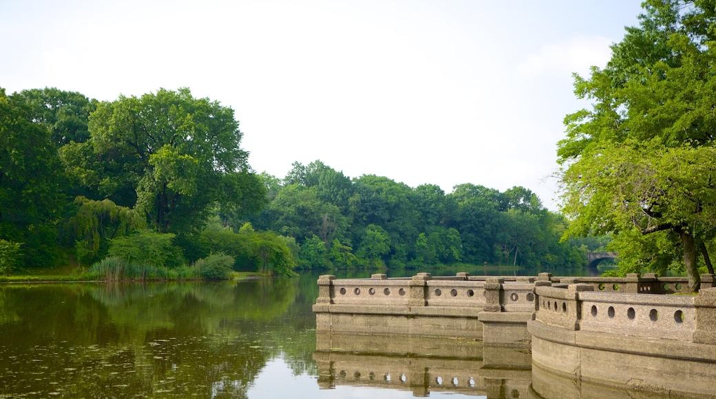 브랜치 브룩 공원 을 특징 공원 과 연못