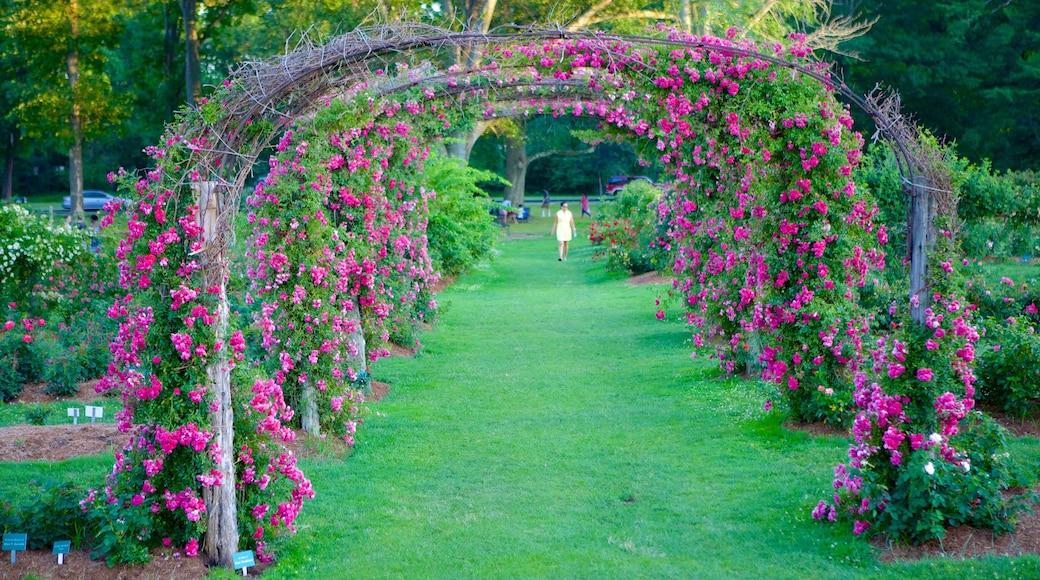 엘리자베스 파크 을 특징 꽃, 야생화 과 공원