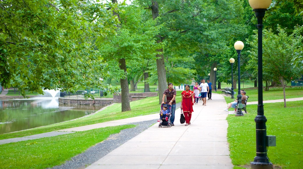Bushnell Park showing hiking or walking and a garden as well as a family
