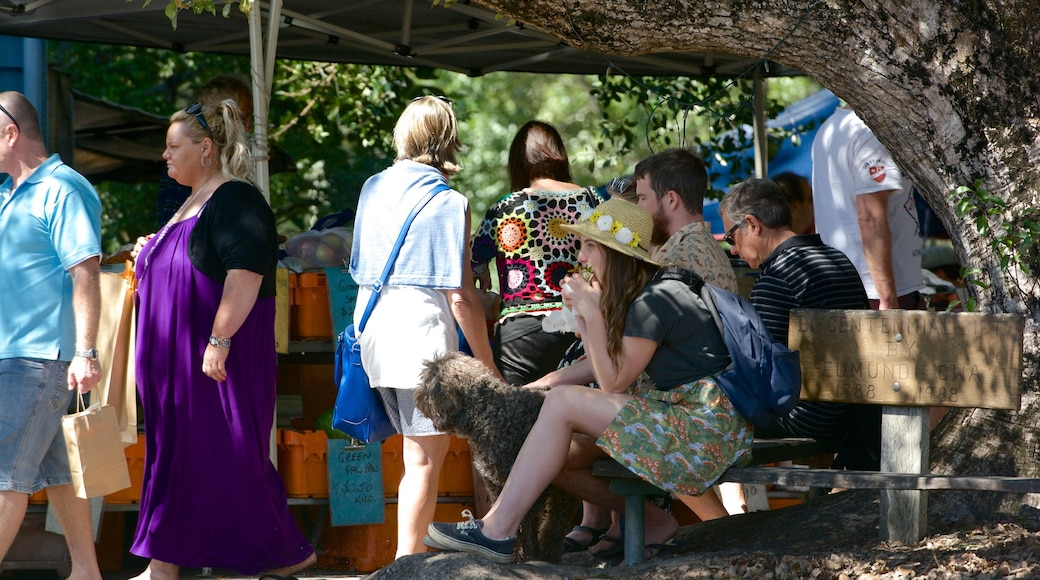 Eumundi showing markets as well as a large group of people