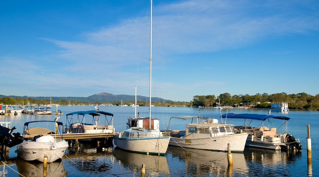 Noosa showing general coastal views, boating and a bay or harbour
