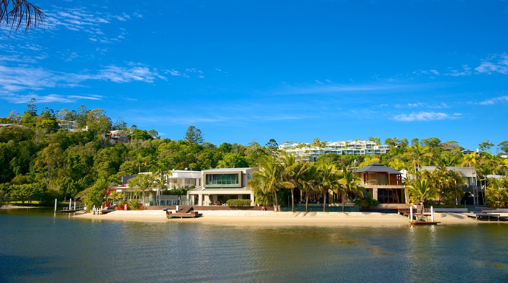 Noosa featuring a coastal town, general coastal views and tropical scenes