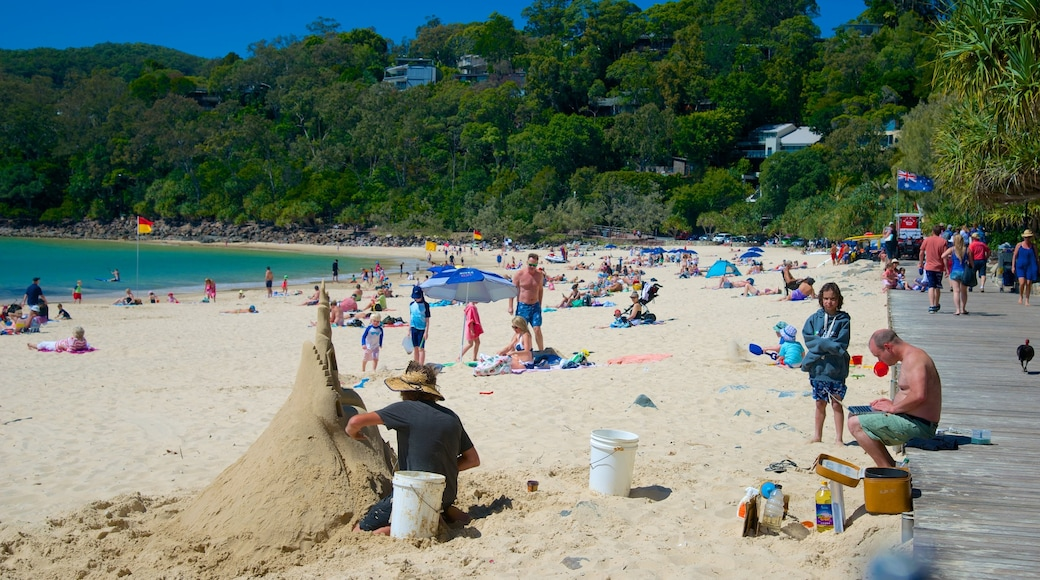 Noosa Beach which includes a sandy beach as well as a large group of people