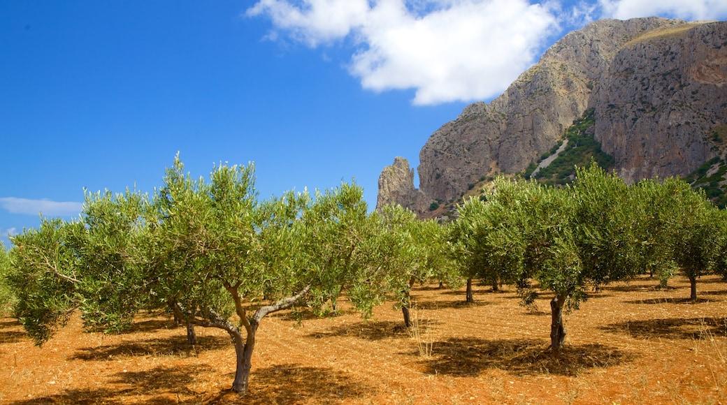 Provinz Trapani das einen ruhige Szenerie, Berge und Farmland