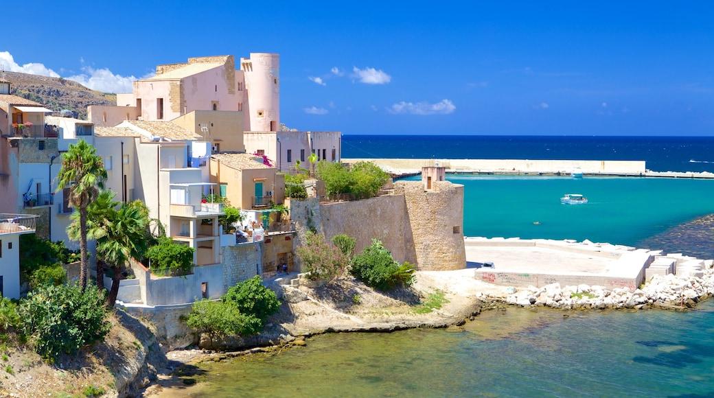 Castellammare del Golfo welches beinhaltet allgemeine Küstenansicht und Küstenort