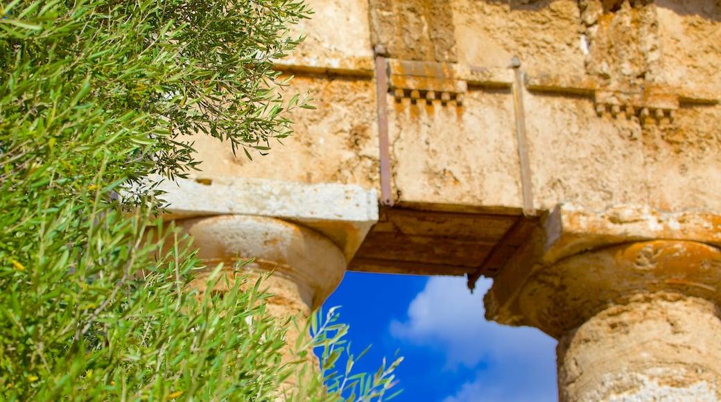 Griechischer Tempel von Segesta welches beinhaltet Ruine und Geschichtliches