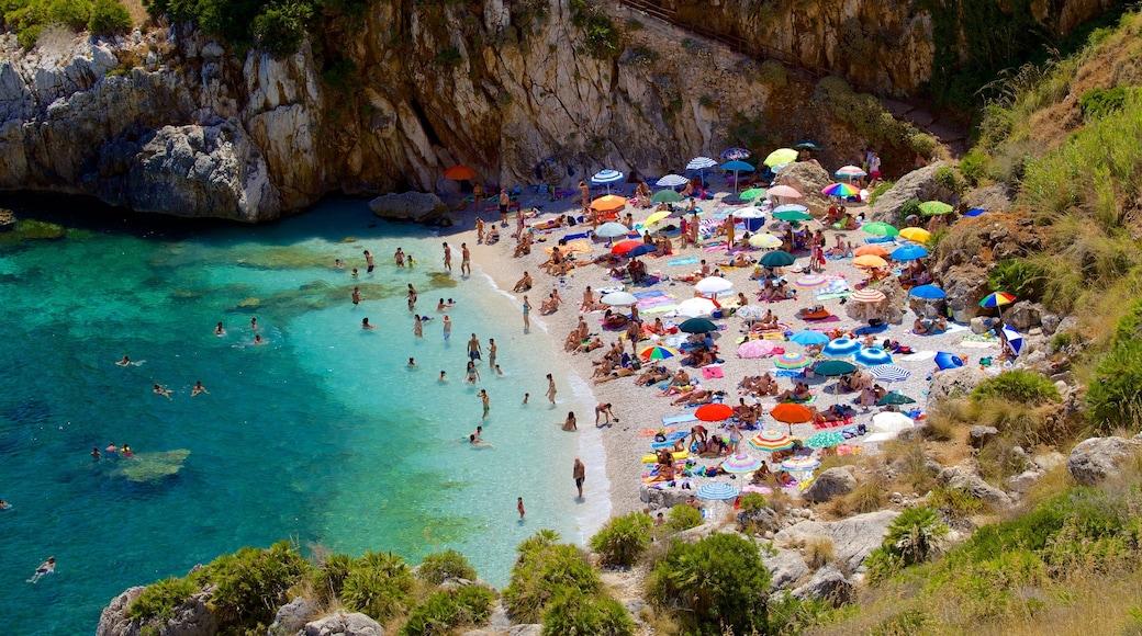 Spiaggia dello Zingaro che include spiaggia sabbiosa, nuoto e baia e porto