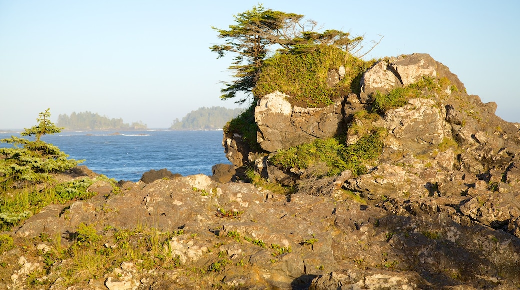 Wild Pacific Trail showing rocky coastline and general coastal views
