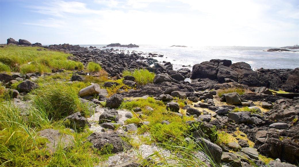 Ucluelet Big Beach featuring rocky coastline