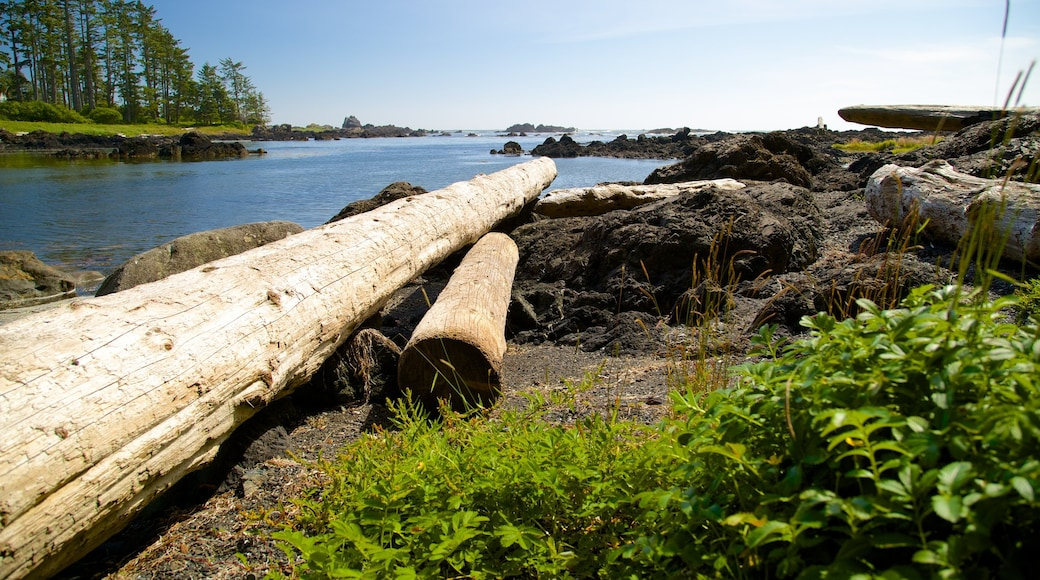 Ucluelet Big Beach featuring a river or creek and general coastal views