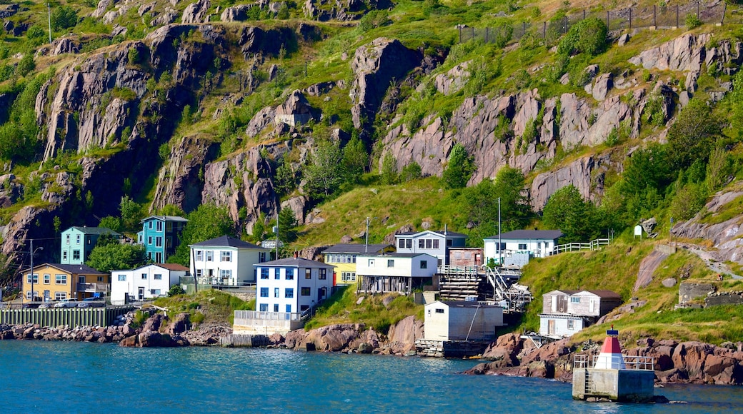 St. John\'s which includes rugged coastline, a coastal town and general coastal views