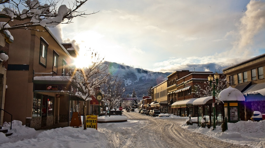 Revelstoke showing a small town or village and snow
