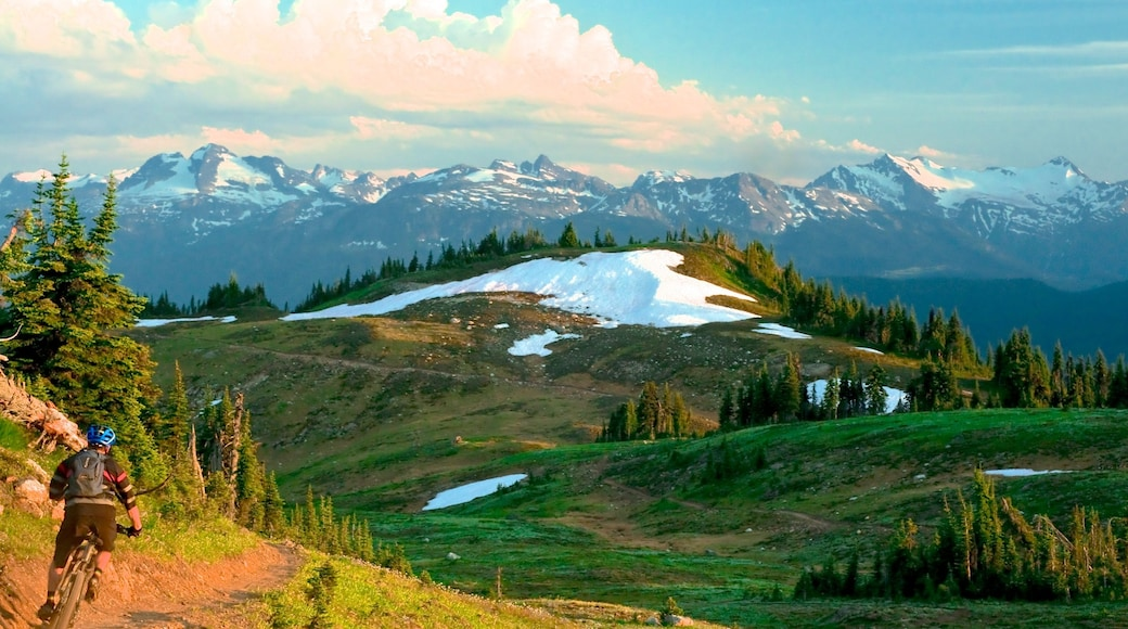 Revelstoke showing landscape views, tranquil scenes and mountain biking