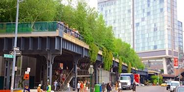 高架公園 呈现出 城市, 街道景色 和 花園
