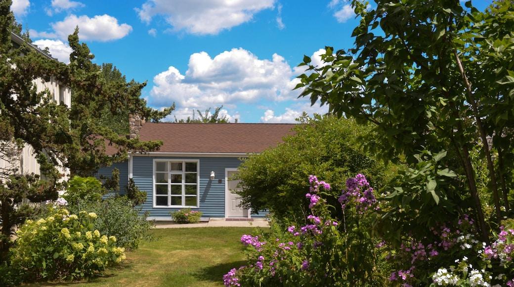 Danbury mostrando um jardim e uma casa