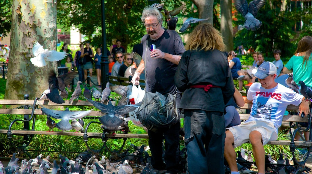 Washington Square Park featuring bird life and a park as well as a small group of people
