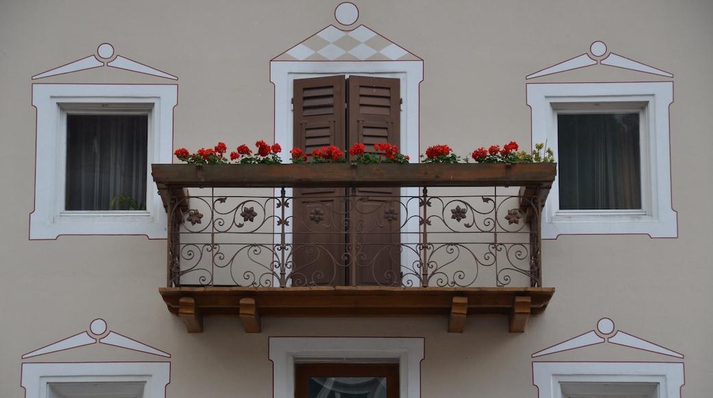 St. Ulrich in Gröden welches beinhaltet Haus und Blumen