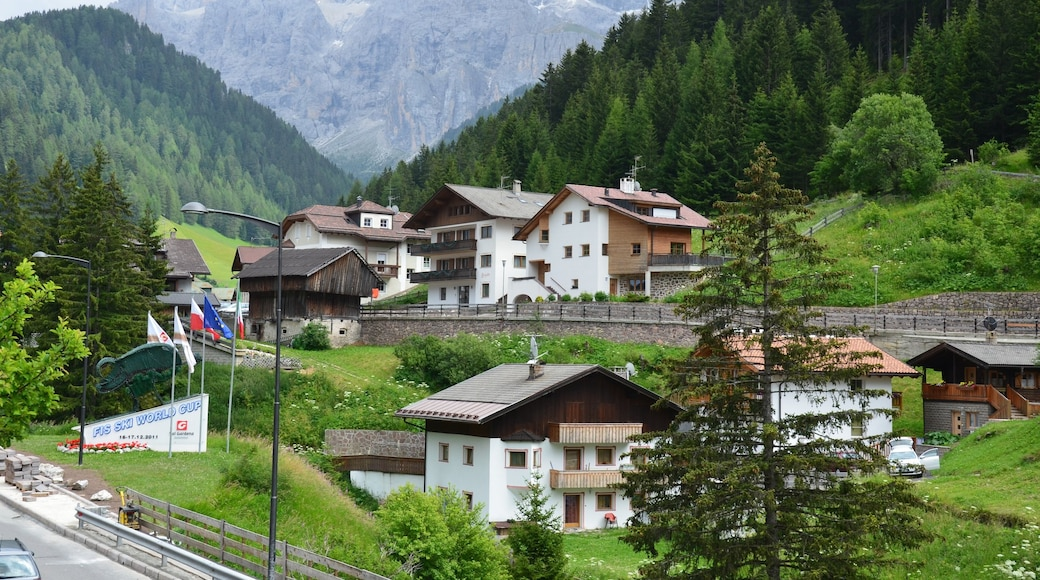 Selva di Val Gardena featuring a small town or village