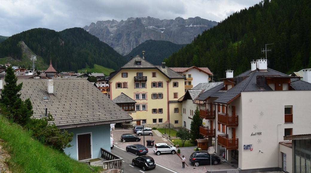 Selva di Val Gardena which includes a small town or village
