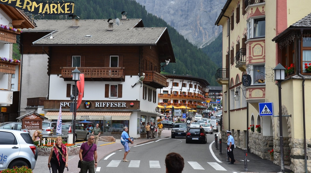 Selva di Val Gardena featuring street scenes, a small town or village and signage
