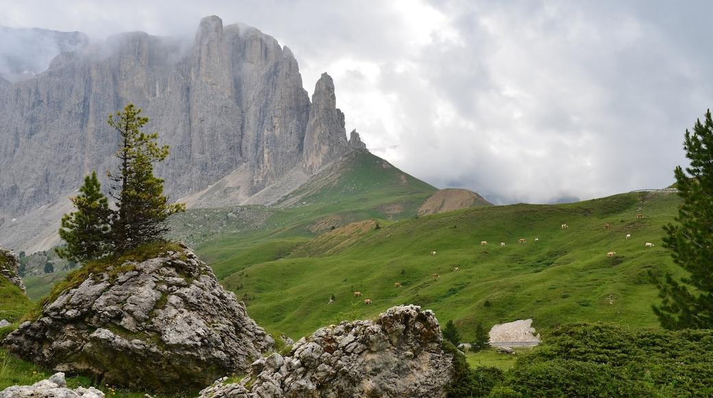 Skigebiet Ciampino-Sella mit einem ruhige Szenerie und Berge