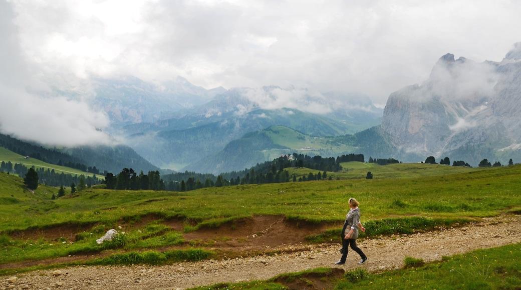 Skigebiet Ciampino-Sella welches beinhaltet Landschaften und ruhige Szenerie sowie einzelne Frau