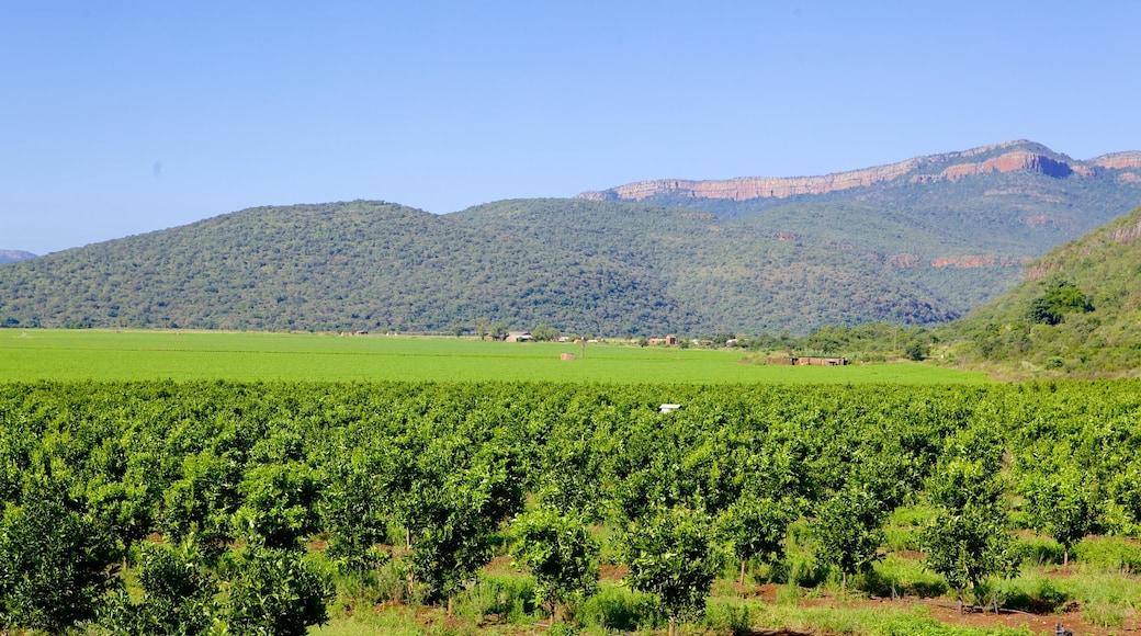 Mpumalanga - Limpopo das einen Landschaften und ruhige Szenerie