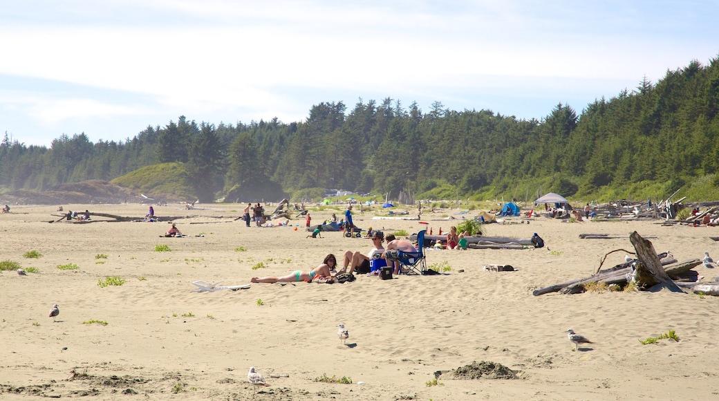 Long Beach showing a beach