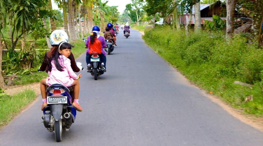 Sumatra featuring motorbike riding