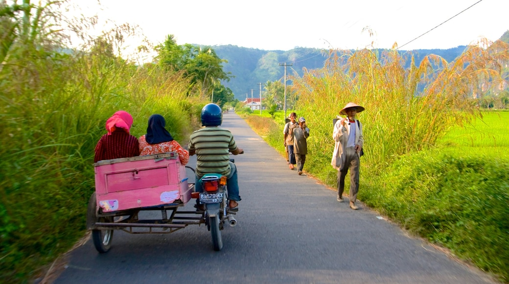 Sumatra featuring tranquil scenes as well as a small group of people