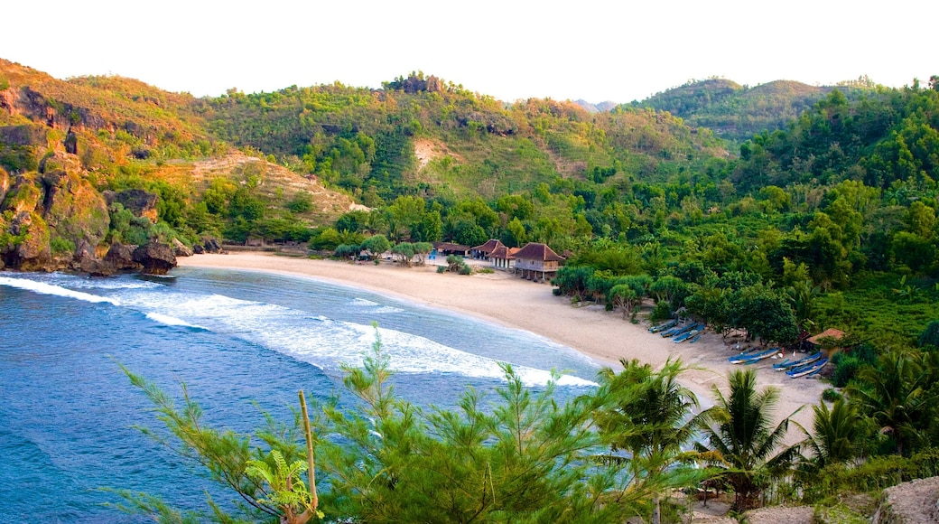 Central Java showing landscape views and a sandy beach