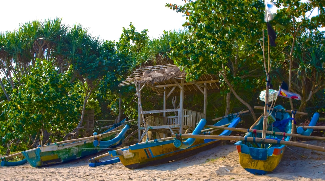 Central Java showing boating, tropical scenes and a sandy beach