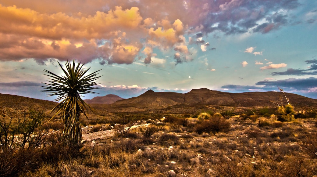 Midland showing landscape views, desert views and a sunset
