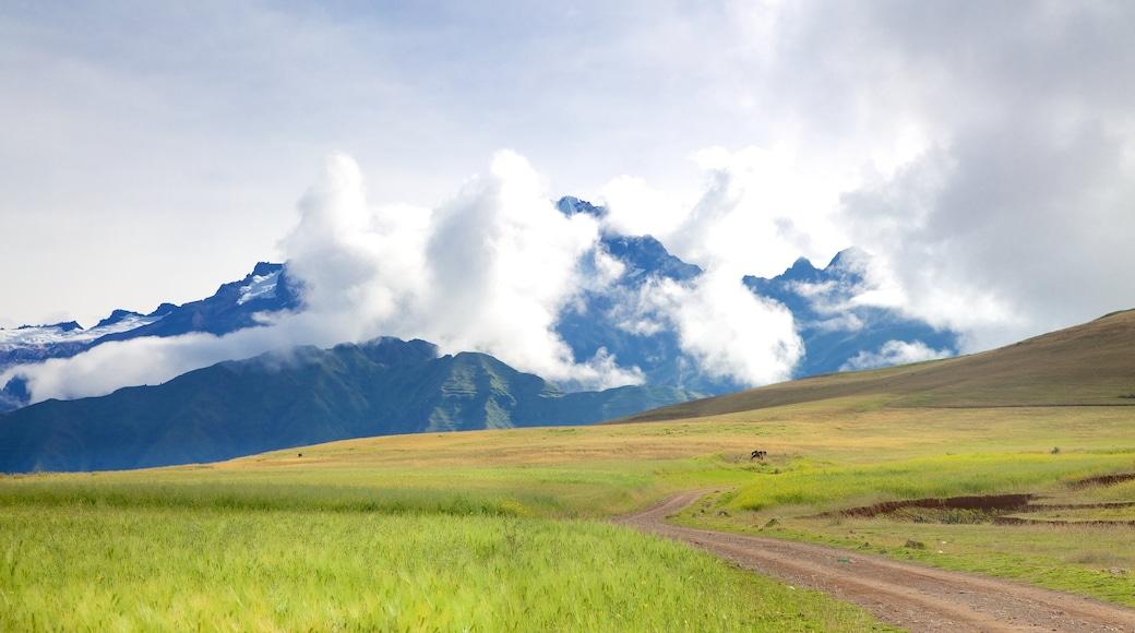 Cusco - Machu Picchu ofreciendo montañas, escenas tranquilas y vista panorámica