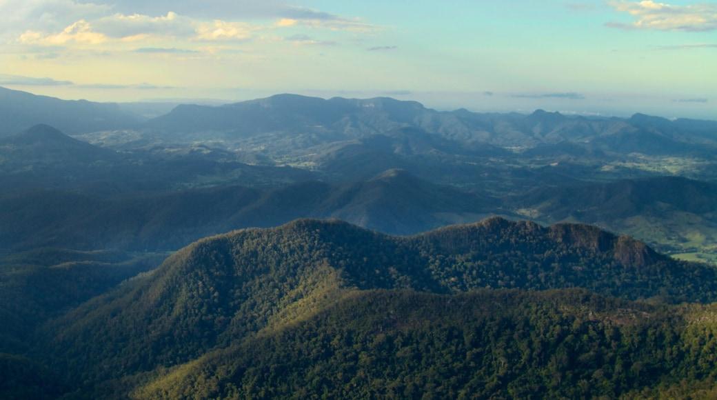 Mount Warning que incluye montañas, bosques y vista panorámica
