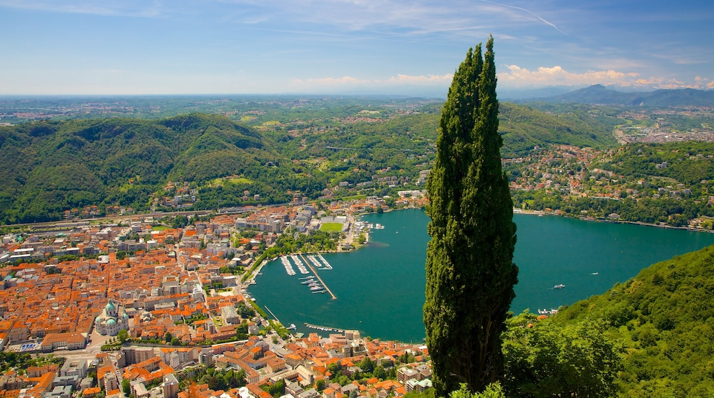 Como-Brunate Funicular which includes a city, a coastal town and a bay or harbour