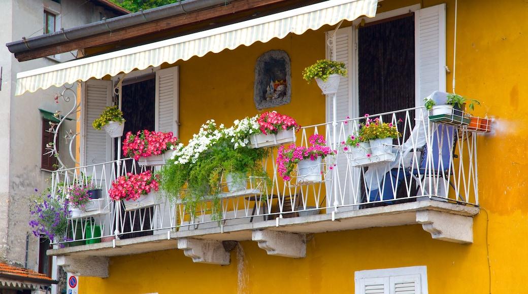 Argegno mit einem Blumen und Haus
